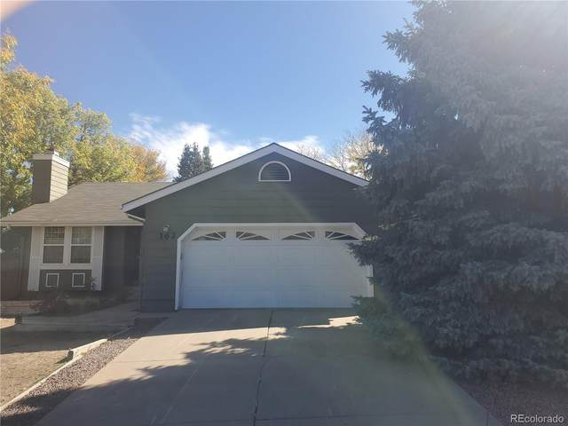 162 Mountain Cloud Circle, Highlands Ranch, CO 80126 (#7083759) :: The Scott Futa Home Team