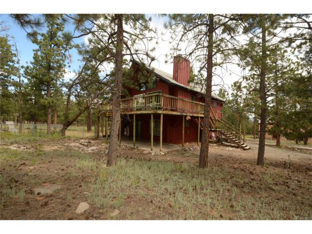 16065 Burt Gulch Road, Buena Vista, CO 81211 (#7084342) :: The Griffith Home Team