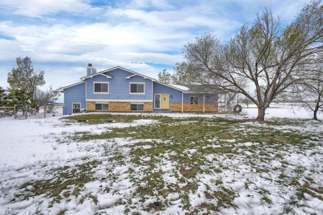 10250 Raptor Loop, Peyton, CO 80831 (#7085143) :: 5281 Exclusive Homes Realty
