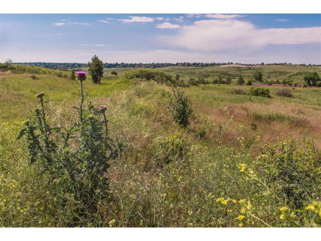 7432 Preservation Trail, Parker, CO 80134 (MLS #7086931) :: 8z Real Estate