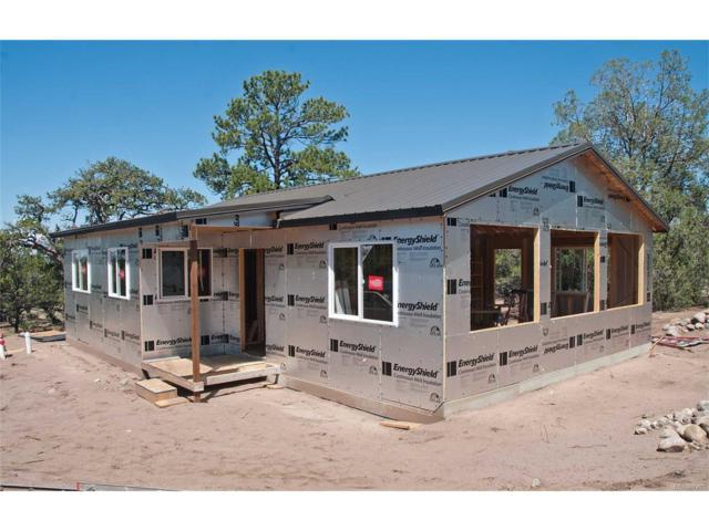 1212 Chaparral Way, Crestone, CO 81131 (MLS #7087106) :: 8z Real Estate