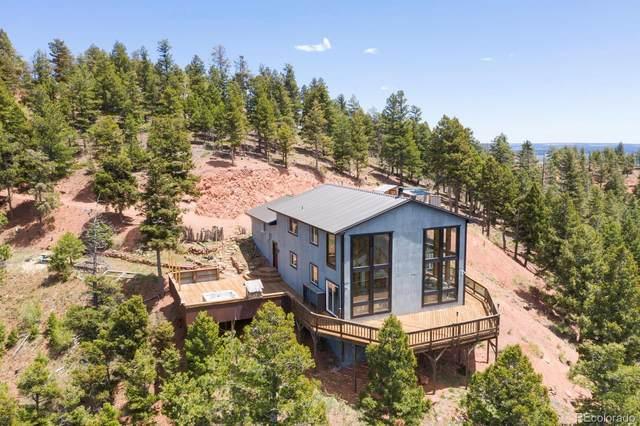 13237 Deer Ridge Way, Larkspur, CO 80118 (#7087497) :: Colorado Home Finder Realty