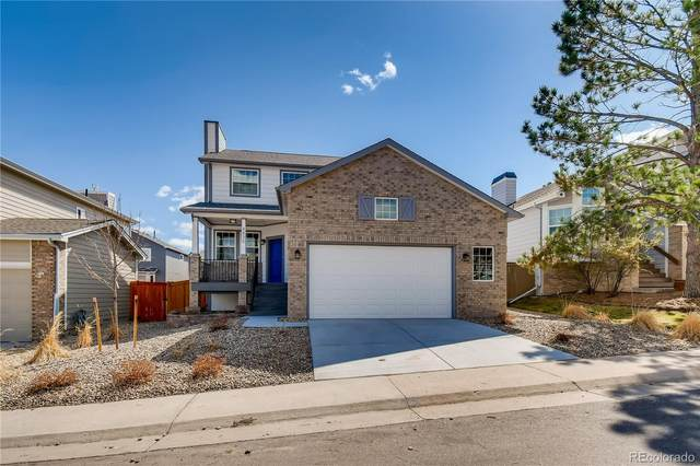 4830 N Foxtail Drive, Castle Rock, CO 80109 (#7088330) :: The Artisan Group at Keller Williams Premier Realty