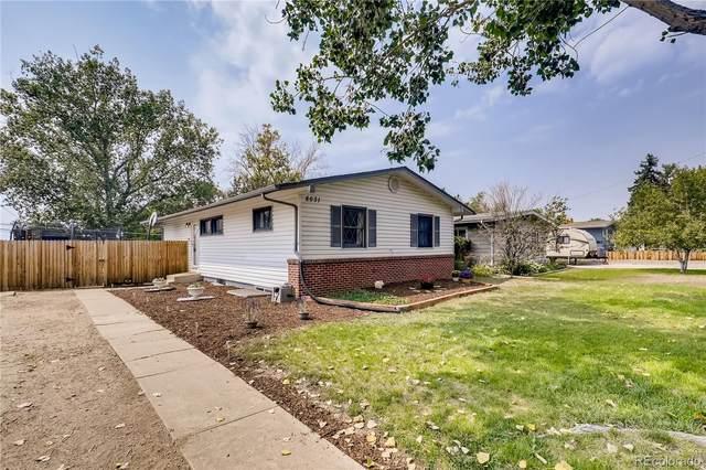 8031 Stuart Street, Westminster, CO 80031 (MLS #7094067) :: 8z Real Estate