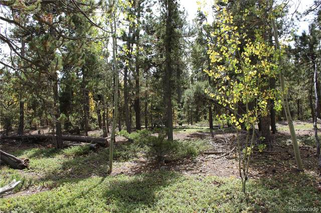 1100 S Dory Lakes, Black Hawk, CO 80422 (#7094324) :: Berkshire Hathaway HomeServices Innovative Real Estate