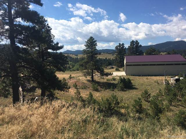 3761 Falcon View Road, Indian Hills, CO 80454 (#7095504) :: The Colorado Foothills Team | Berkshire Hathaway Elevated Living Real Estate