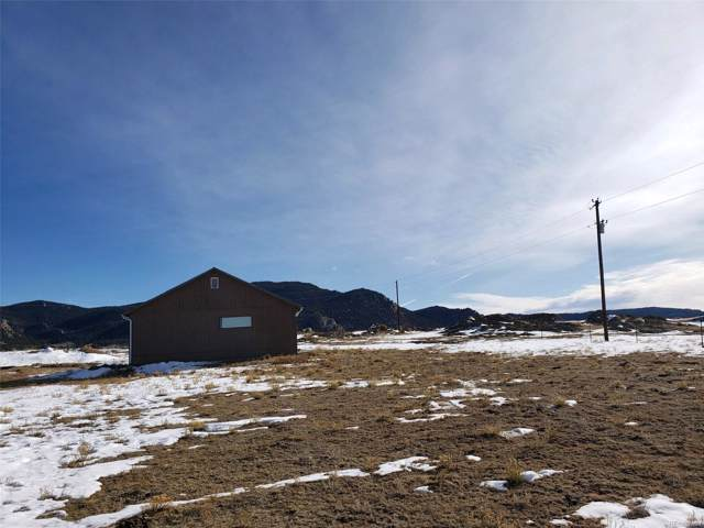 756 County 333 Road, Lake George, CO 80827 (#7098106) :: Bring Home Denver with Keller Williams Downtown Realty LLC