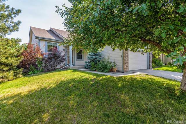 11201 Xavier Drive, Westminster, CO 80031 (#7099973) :: The DeGrood Team