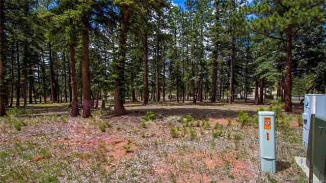 610 Chipmunk Drive, Woodland Park, CO 80863 (MLS #7100556) :: Keller Williams Realty