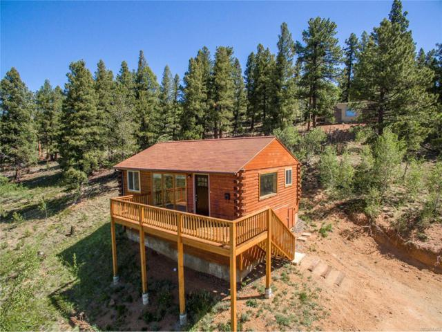 246 Hayes Street, Bailey, CO 80421 (MLS #7102935) :: 8z Real Estate