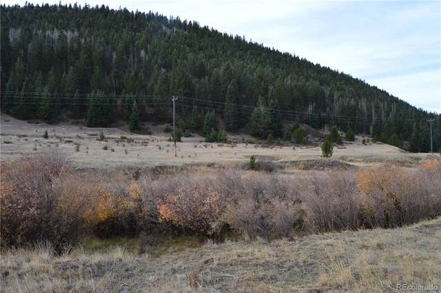 2nd Street, Victor, CO 80860 (MLS #7104315) :: Find Colorado