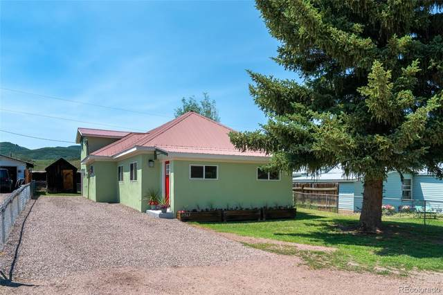 21563 Fourth Avenue, Phippsburg, CO 80469 (#7114377) :: Berkshire Hathaway Elevated Living Real Estate