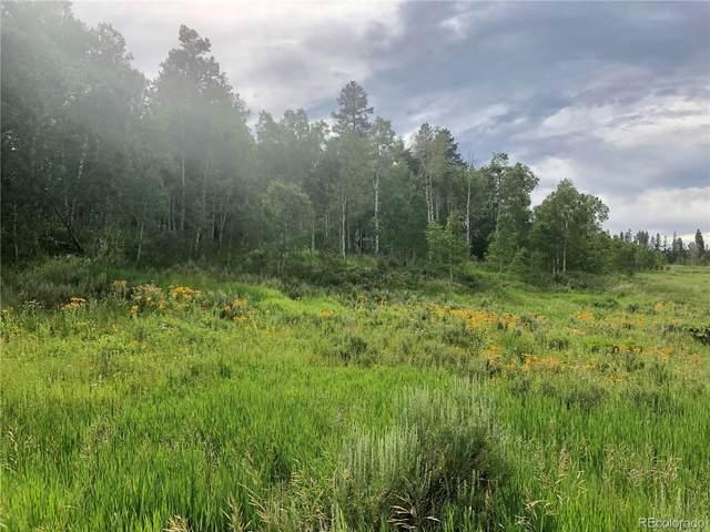 32519 Ute Trail, Oak Creek, CO 80467 (#7117990) :: My Home Team