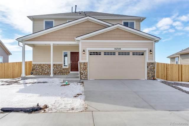 2455 E Trout Lane, Strasburg, CO 80136 (MLS #7119354) :: 8z Real Estate
