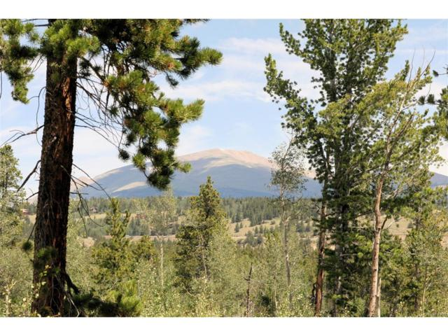 Thompson Park Road, Fairplay, CO 80440 (MLS #7123960) :: 8z Real Estate