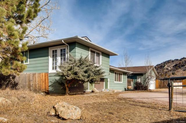 1193 Glen Street, Castle Rock, CO 80108 (#7130632) :: The Thayer Group