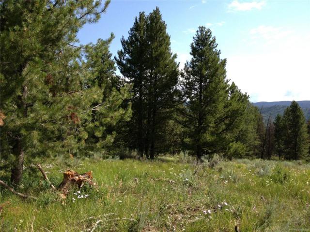 000 Whiffle Tree, Oak Creek, CO 80467 (#7133623) :: The Dixon Group