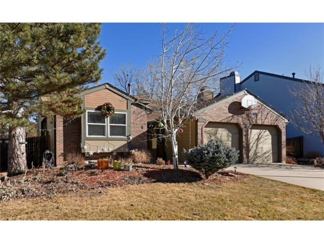 7252 S Mount Holy Cross, Littleton, CO 80127 (#7137873) :: RE/MAX Professionals