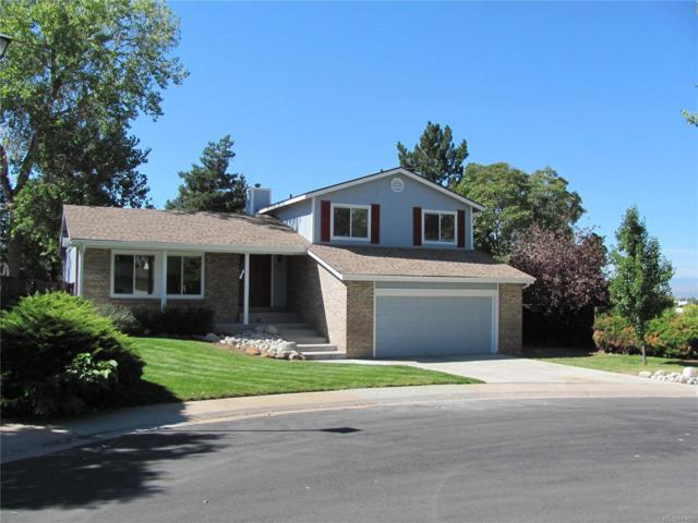 8403 S Painted Sky Street, Highlands Ranch, CO 80126 (#7139718) :: The HomeSmiths Team - Keller Williams