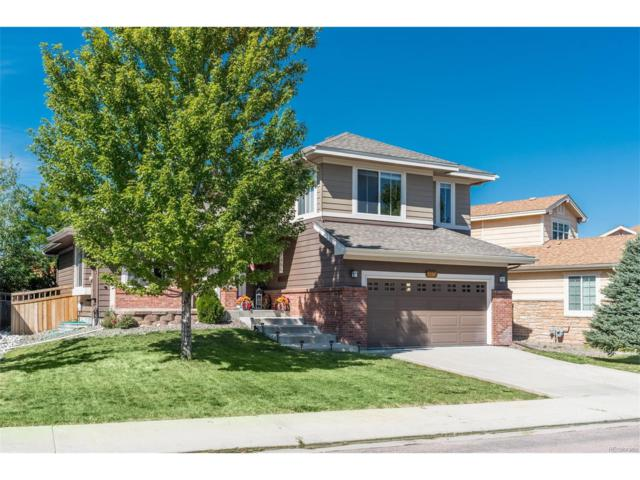 3307 Willowrun Drive, Castle Rock, CO 80109 (#7139832) :: The Griffith Home Team