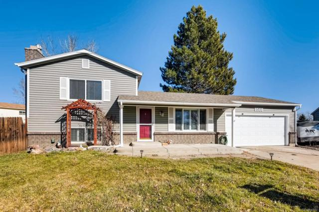 8568 Ingalls Circle, Arvada, CO 80003 (#7140173) :: House Hunters Colorado