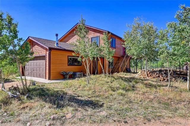 340 Quartz Circle, Bailey, CO 80421 (#7140732) :: The HomeSmiths Team - Keller Williams
