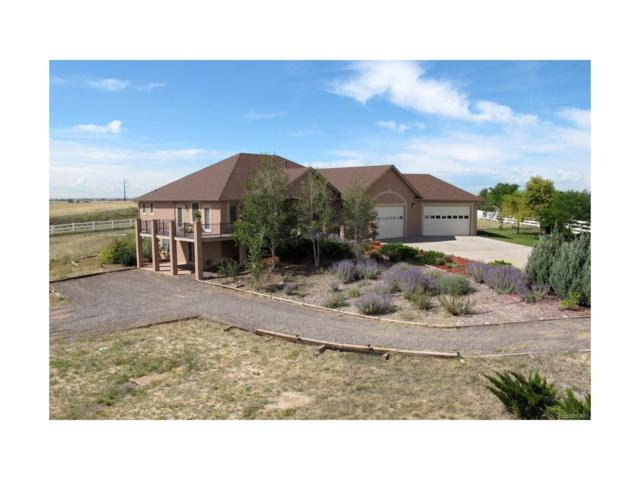 14406 N Maywood Court, Brighton, CO 80603 (#7141918) :: The Peak Properties Group