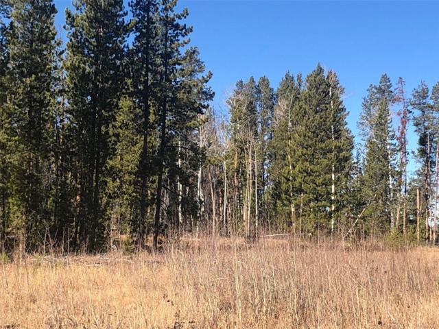 20945 Cayuse Trail, Oak Creek, CO 80467 (MLS #7142525) :: 8z Real Estate