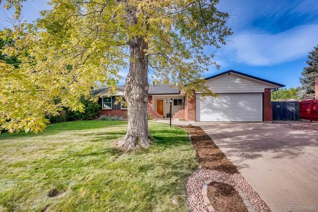 6362 W Maplewood Drive, Littleton, CO 80123 (#7143427) :: Wisdom Real Estate