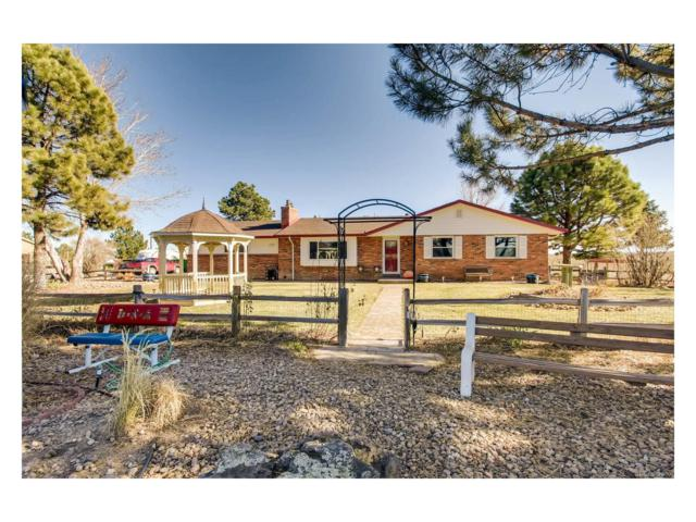 12744 N 3rd Street, Parker, CO 80134 (#7143698) :: Colorado Home Finder Realty