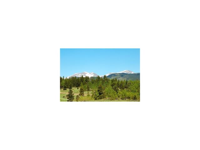 0 Mack Rd Road, Central City, CO 80427 (#7144491) :: Thrive Real Estate Group