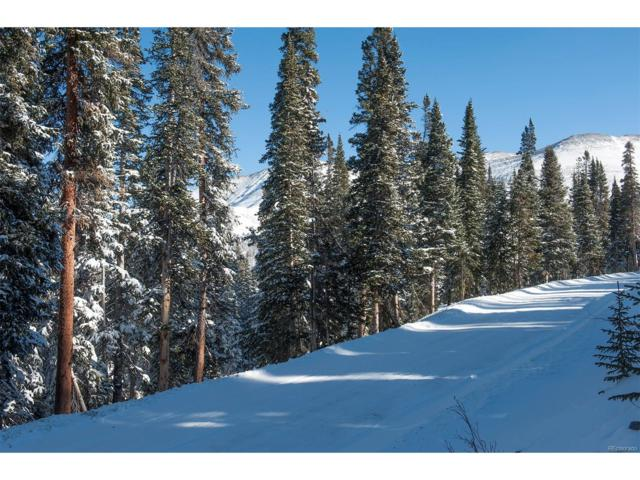 218 Quandary View Drive, Breckenridge, CO 80424 (#7146487) :: The Heyl Group at Keller Williams