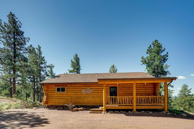 490 Apache Trail, Florissant, CO 80816 (MLS #7146628) :: 8z Real Estate