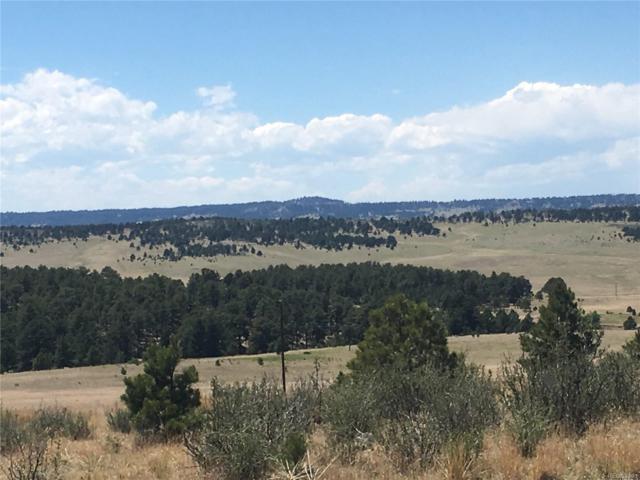 County Road 73, Colorado Springs, CO 80808 (MLS #7147488) :: 8z Real Estate