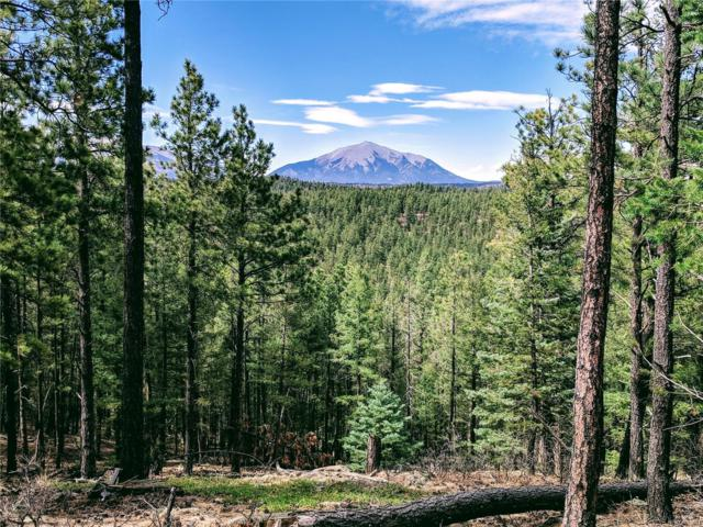 17101 Wilderness Ridge Trail, Weston, CO 81091 (MLS #7154665) :: 8z Real Estate