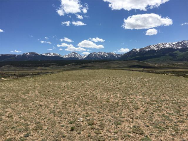 295 County Road 55, Leadville, CO 80461 (#7159297) :: The DeGrood Team