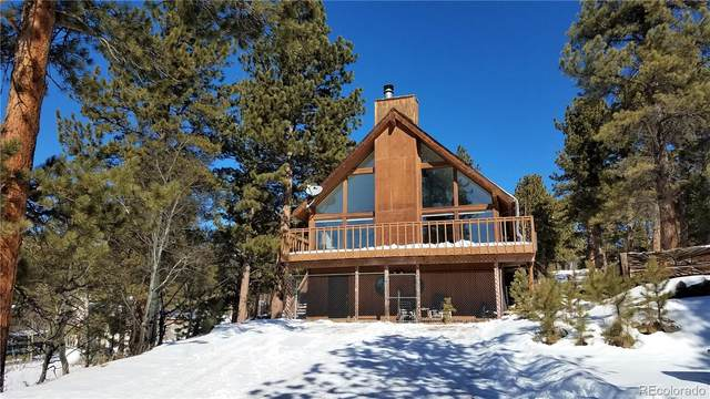 141 Tall Timber Lane, Bailey, CO 80421 (#7160298) :: Colorado Home Finder Realty