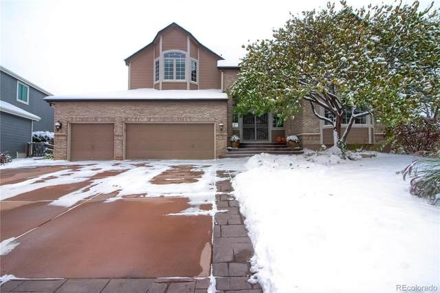 10794 Cougar Ridge, Littleton, CO 80124 (MLS #7166926) :: 8z Real Estate