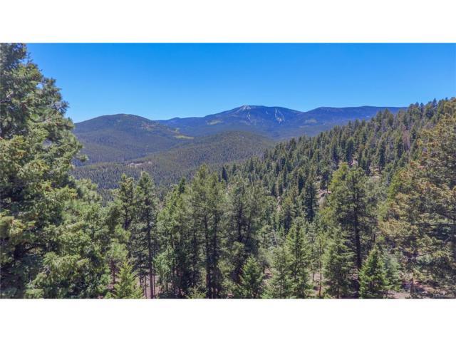 32624 Lodge Pole Circle, Evergreen, CO 80439 (MLS #7169139) :: 8z Real Estate