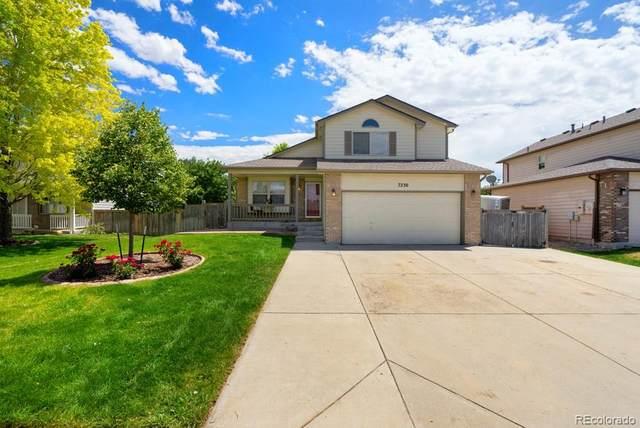 7230 W 20th Lane, Greeley, CO 80634 (MLS #7170269) :: 8z Real Estate