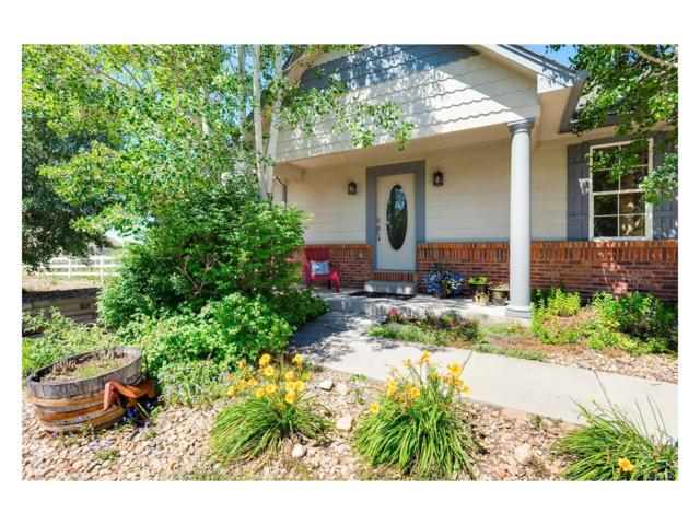 8005 Sunrise Circle, Frederick, CO 80516 (MLS #7173686) :: 8z Real Estate