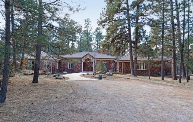 11230 Daley Circle, Parker, CO 80134 (#7173871) :: The DeGrood Team