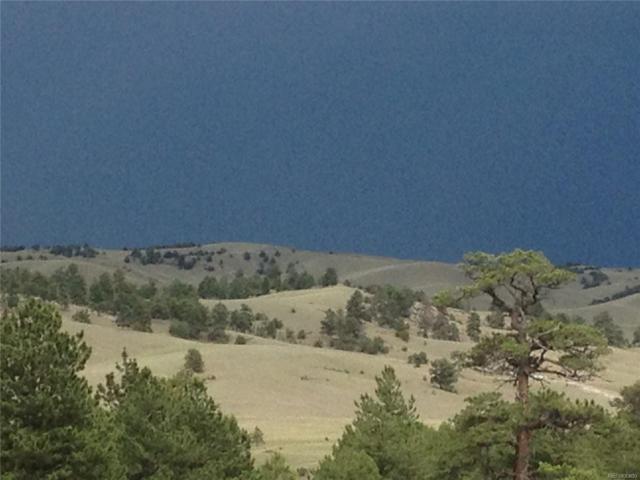 965 Kinkehee Trail, Hartsel, CO 80449 (MLS #7174136) :: 8z Real Estate