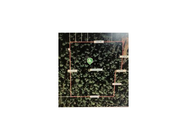Evergreen Drive, Conifer, CO 80433 (MLS #7174693) :: 8z Real Estate