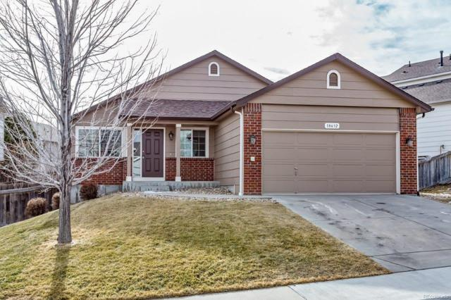 18632 Horse Creek Street, Parker, CO 80134 (#7174837) :: The City and Mountains Group