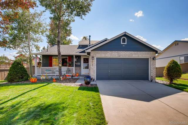 4946 Eckert Street, Castle Rock, CO 80104 (MLS #7175865) :: Bliss Realty Group