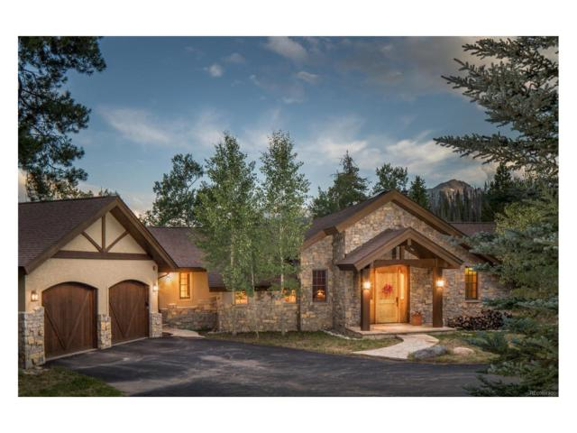 0307 Scr 1353, Silverthorne, CO 80498 (MLS #7177093) :: 8z Real Estate