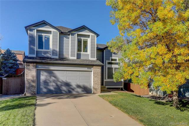 9701 Whitecliff Place, Highlands Ranch, CO 80129 (#7183552) :: The DeGrood Team