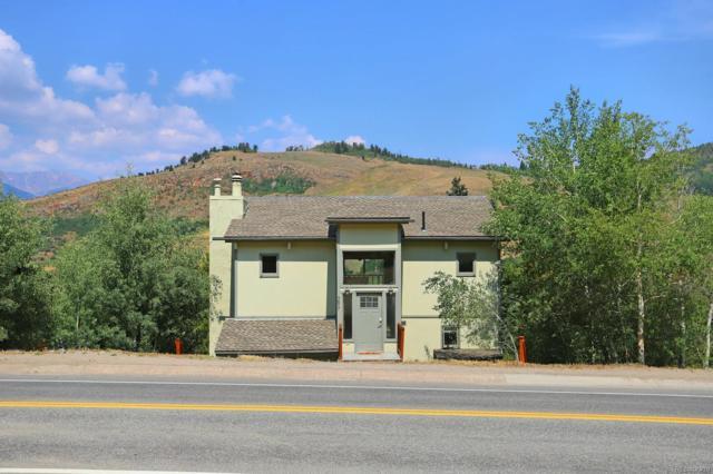 297 Deer Path Road, Dillon, CO 80435 (#7187678) :: Bring Home Denver