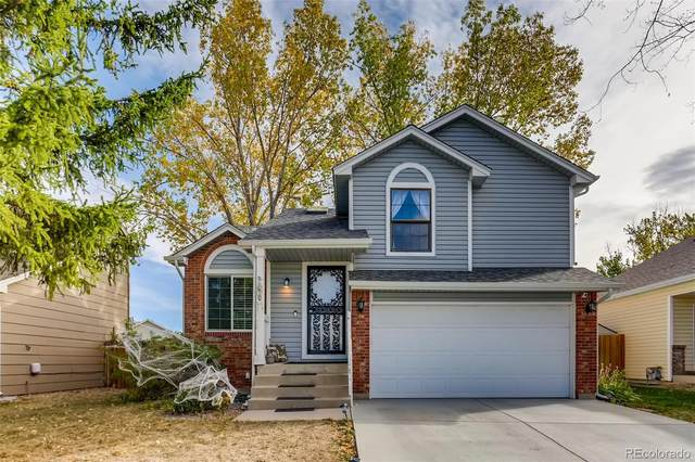 170 N Holcomb Street, Castle Rock, CO 80104 (#7188835) :: The Margolis Team